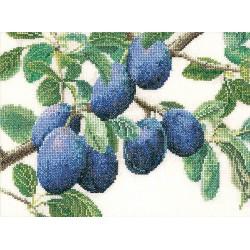 Branche  de  prunier  3015  Lin  Thea Gouverneur