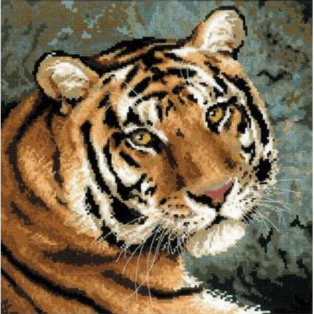 Tigre  Sibérien  1282  Riolis