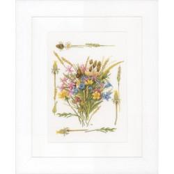Bouquet  champêtre  0148165  Lanarte  Étamine