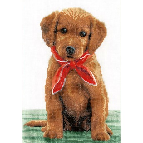 Chiot  Labrador  avec  écharpe  0146581  Vervaco