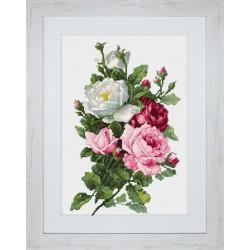 Bouquet  de  roses  BA22855  Luca-S