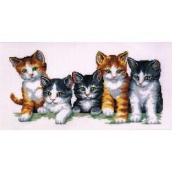 La  famille  des  chats  0012073  Vervaco