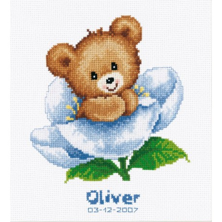 Naissance  Oliver  ou  Lily  0011825  Vervaco