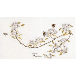 Thea Gouverneur  1047  Pear blossom