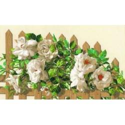 Riolis  kit White Roses on Fence   Riolis 1059   Broderie du monde