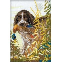 Hunting  Spaniel  1151  Riolis
