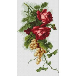 Roses  rouges  et  Raisins  B2229  Luca-S