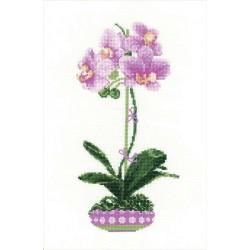 Riolis  kit Lilac Orchid | Riolis 1163 | Broderie du monde