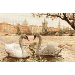 Riolis  Swans  in  Prague  1364