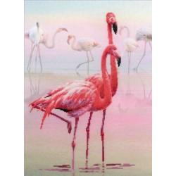 Riolis  kit Flamingo   Riolis  PT0012   Broderie du monde